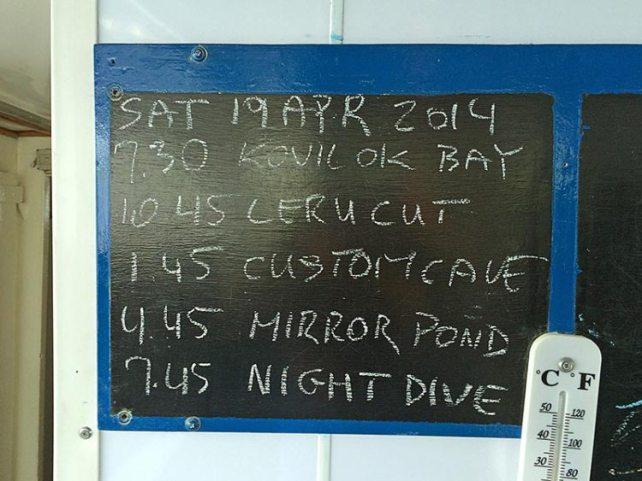 dive-board