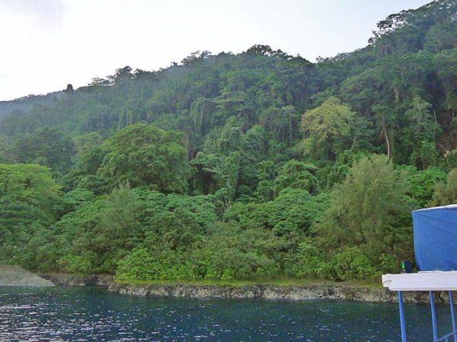 mary-island